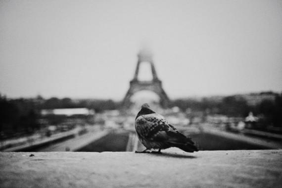 European Trip